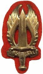 sadf-infantry-regiment-n-ransvaal-beret-badge